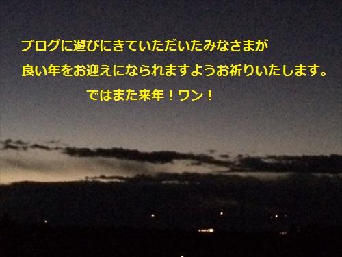 IMG_2816_R.jpg