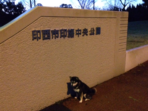 IMG_4270Blog.jpg