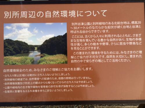 IMG_7853Blog.jpg