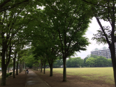 IMG_8715Blog.jpg