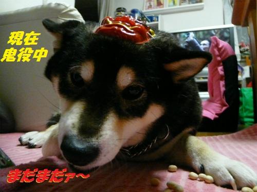P1580595Blog.jpg