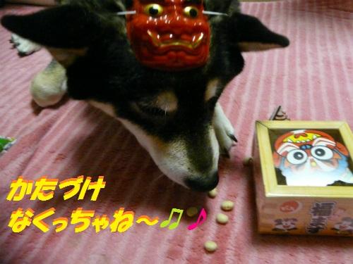 P1580596Blog.jpg