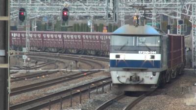 DSC00530t.jpg