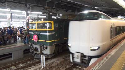 DSC00555t.jpg