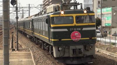 DSC00558t.jpg
