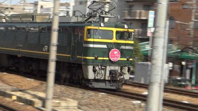 DSC00567t.jpg