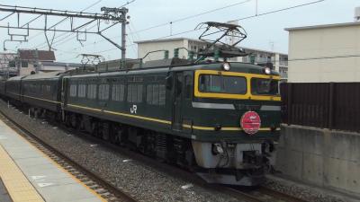 DSC00635s.jpg