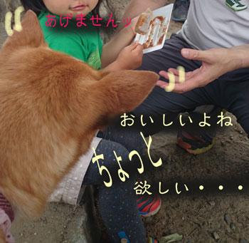 2015-0525-4.jpg