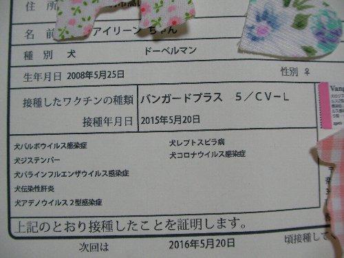 201505208腫混合ワクチン接種証明書②