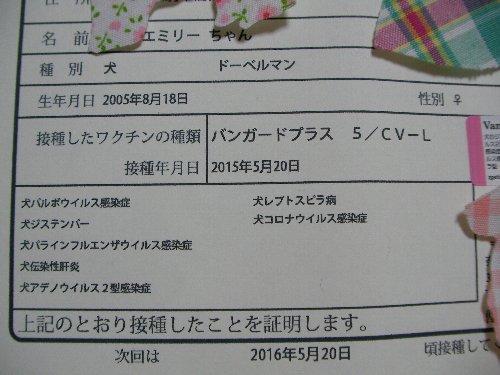 201505208腫混合ワクチン接種証明書⑤