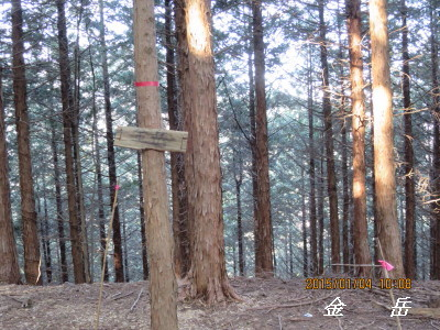 F 金 岳