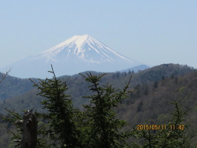 酉谷山より石尾根の向こうに富士山