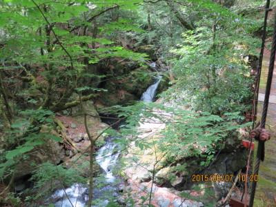 吊り橋横の滝