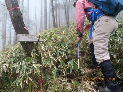 飛龍山への登り口