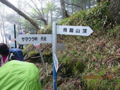 雲取山、将監峠、前飛龍前方面分岐(飛龍権現)