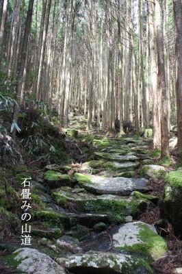 見晴らし台より琵琶湖を望む