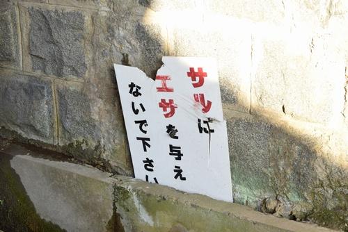 270308 欅坂橋梁10