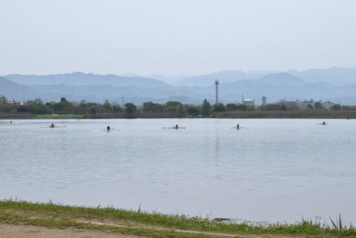 270418 江津湖レガッタ1