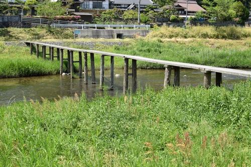 270502 崎山木橋1