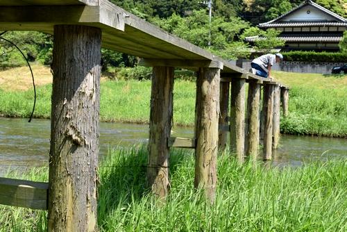 270502 崎山木橋8