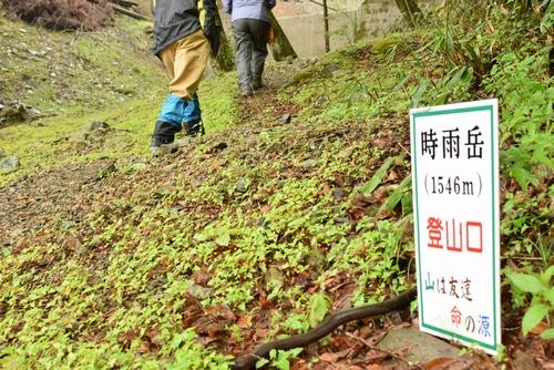 270509 時雨岳登山4
