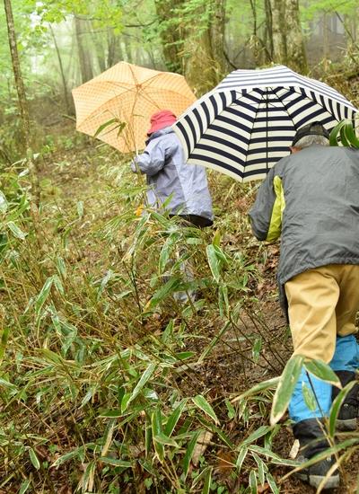 270509 時雨岳登山9