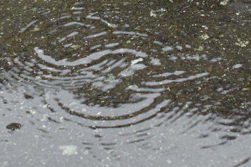270602 梅雨入り7