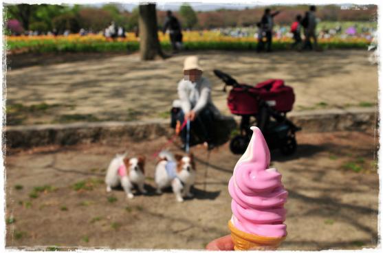 昭和記念公園⑭