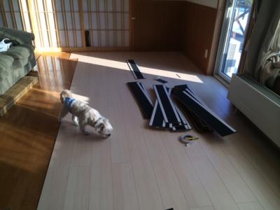 床貼り31