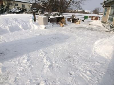 まさよ除雪