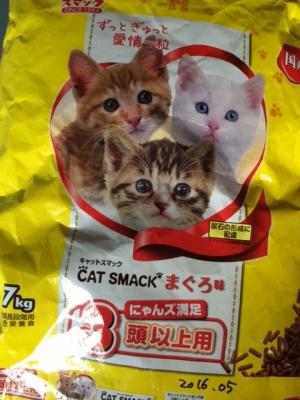 猫餌Fさん
