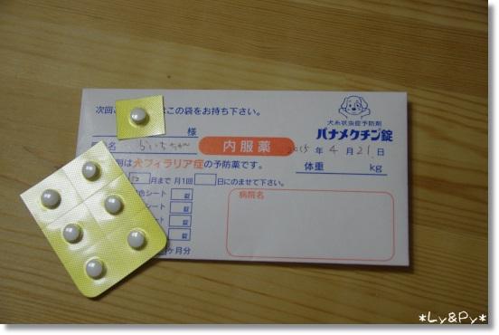 IMGP5675[1]