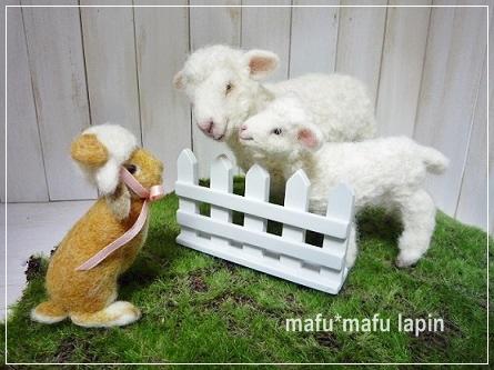 羊毛作品3