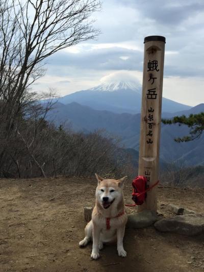 蛭ケ岳_convert_20150420143311