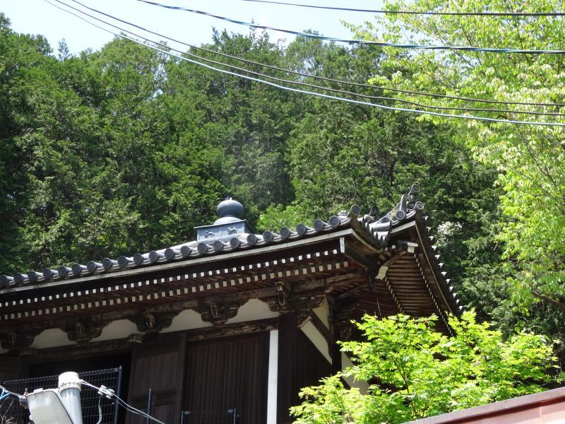 本圀寺10