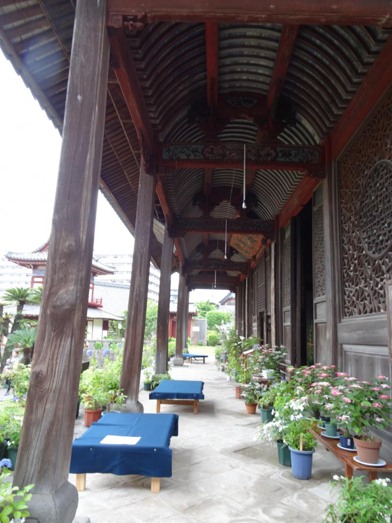 興福寺13