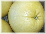 晩白柚-1
