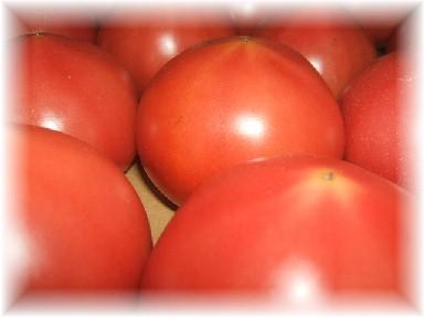 塩トマト-2