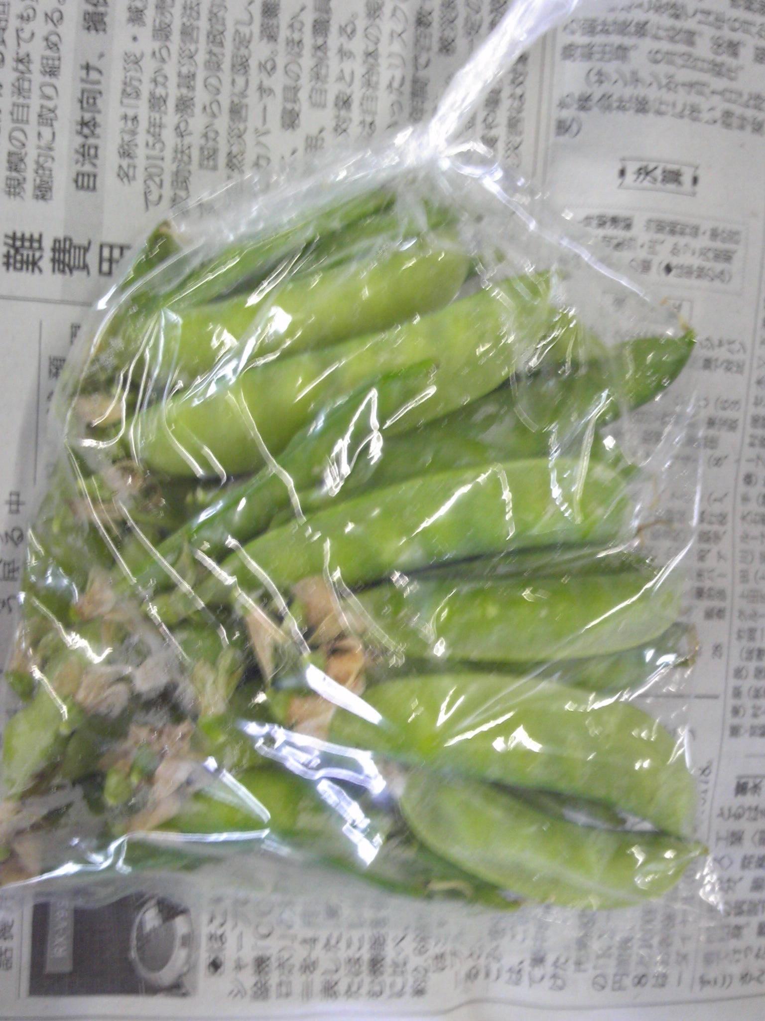 0509サヤ豆