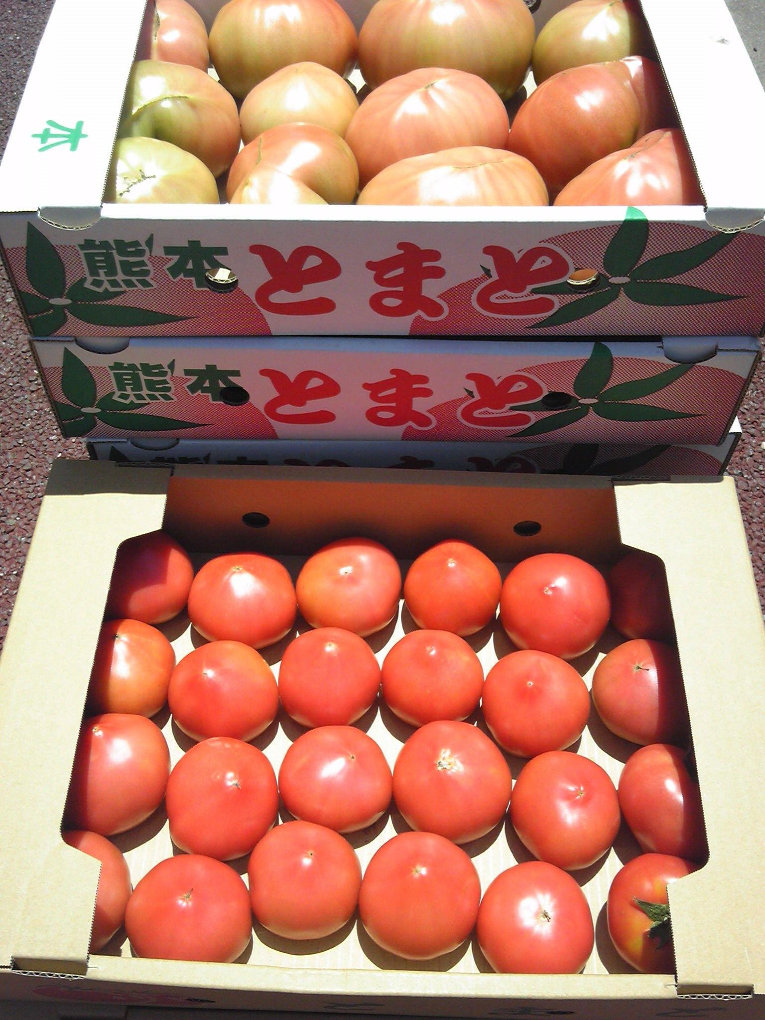 0606トマト