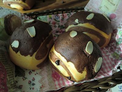 チョコクッキーパン