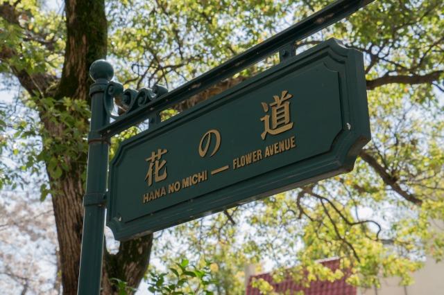 タカラジェンヌ気分でお花見♪ ~宝塚・花のみち~-004