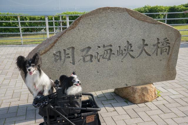 花の島「淡路島」へ♪ ~観覧車編~-001