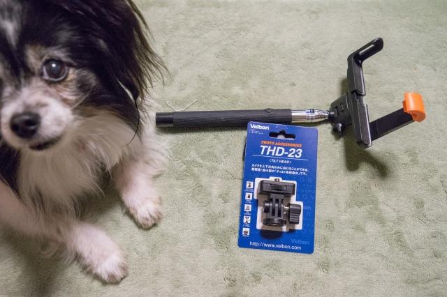 自撮り棒に秘密兵器を装着して「ワンコ目線動画」-001