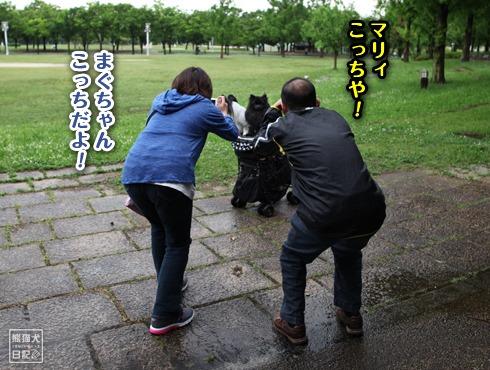 「熊猫犬日記」が大阪にやってきた!【真熊くんのお口パクパク♪】-002