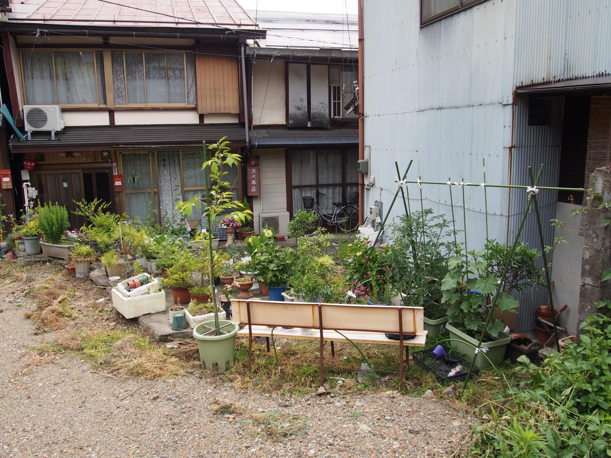 ヒミツの花園2