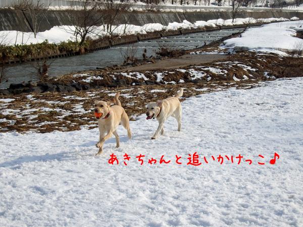 eriaki_20150316212305d0c.jpg