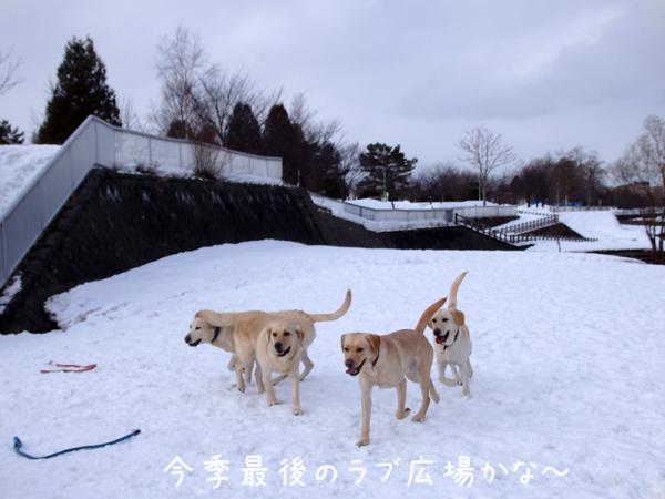 hiroba_2015031222154219c.jpg