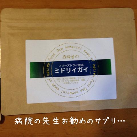 sapuri_20150414014106dc4.jpg