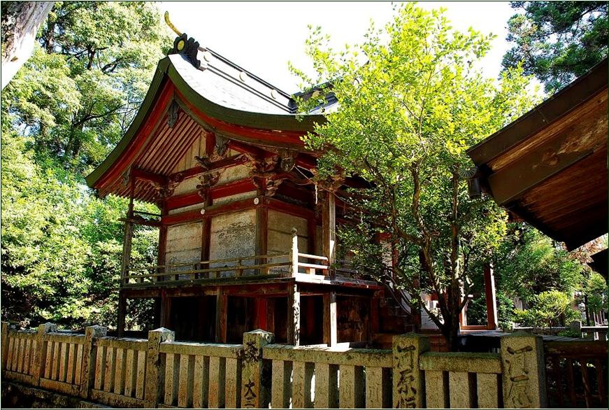 8-8  一宮神社本殿徳島20150314